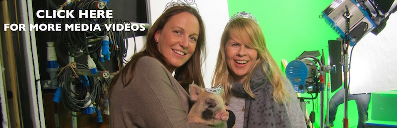 Petpiggies Micro Pigs for film, television & digital media