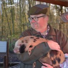 mini-micro-pig-experience-petpiggies-woburn-forest